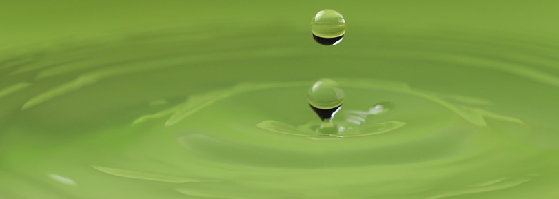 Water droplet in a calm green pond.